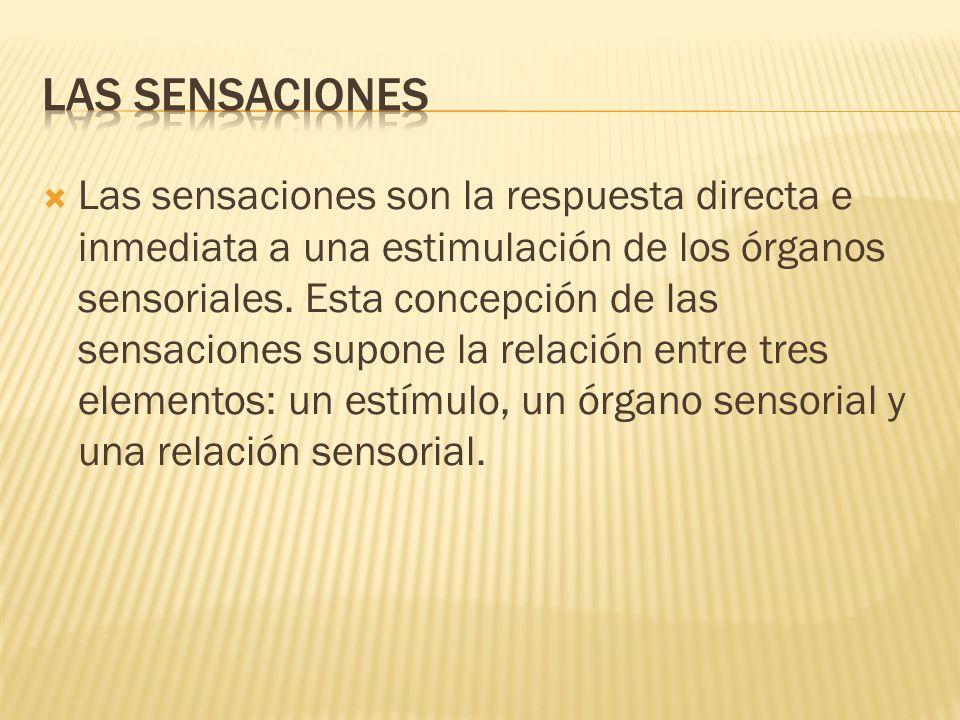 LAS SENSACIONES