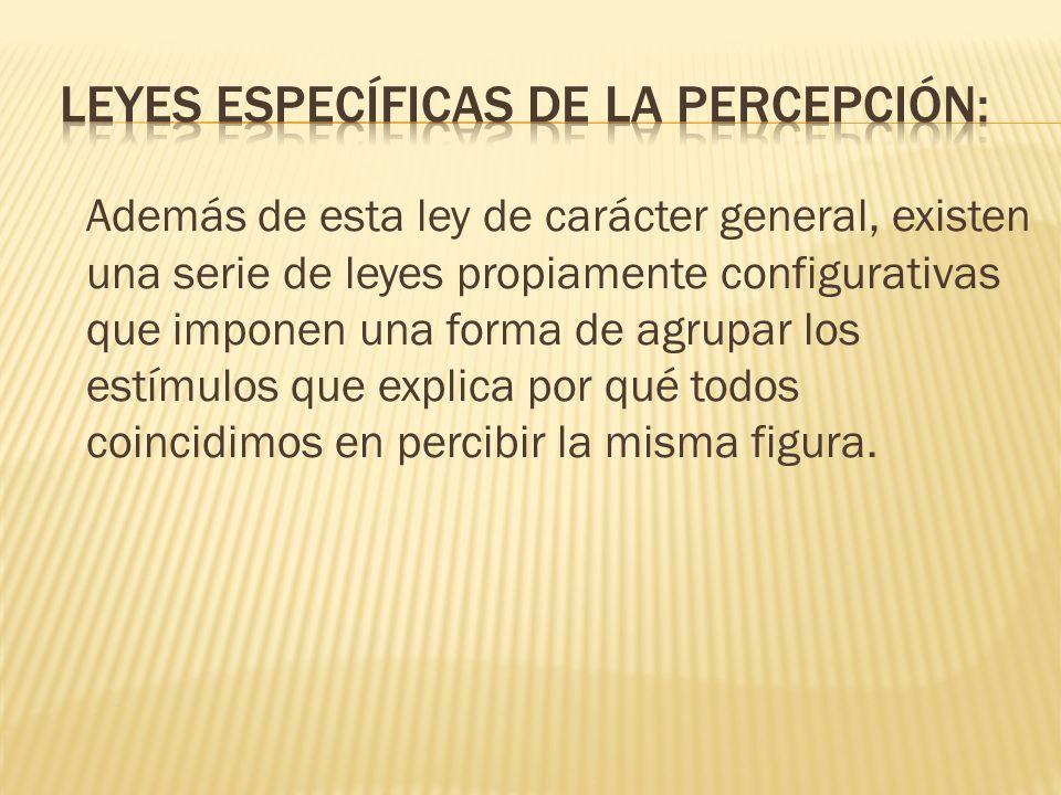 Leyes específicas de la percepción: