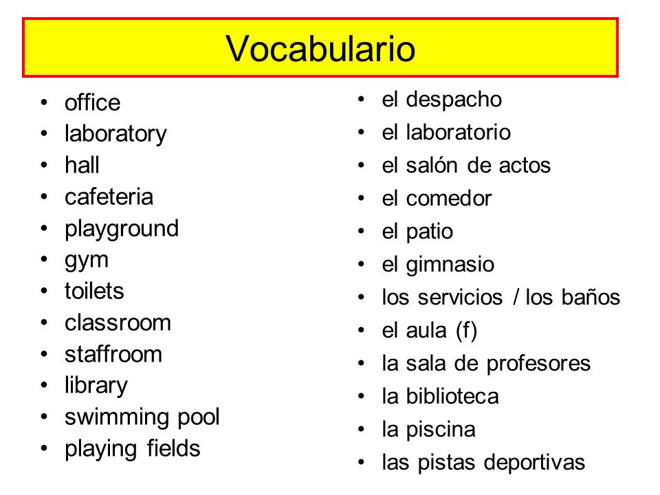 Vocabulario office laboratory hall cafeteria playground gym toilets