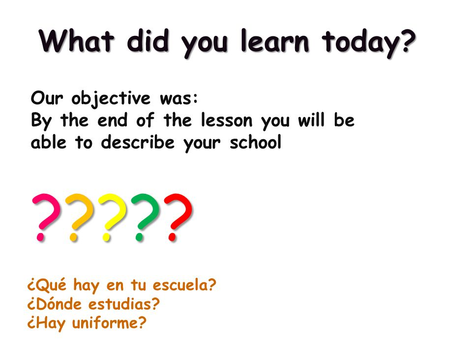 What did you learn today