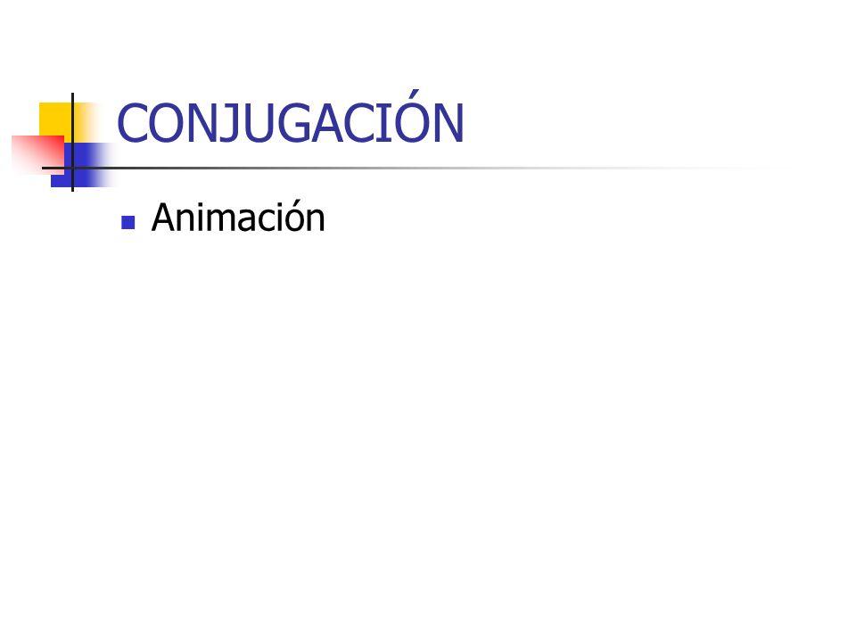 CONJUGACIÓN Animación