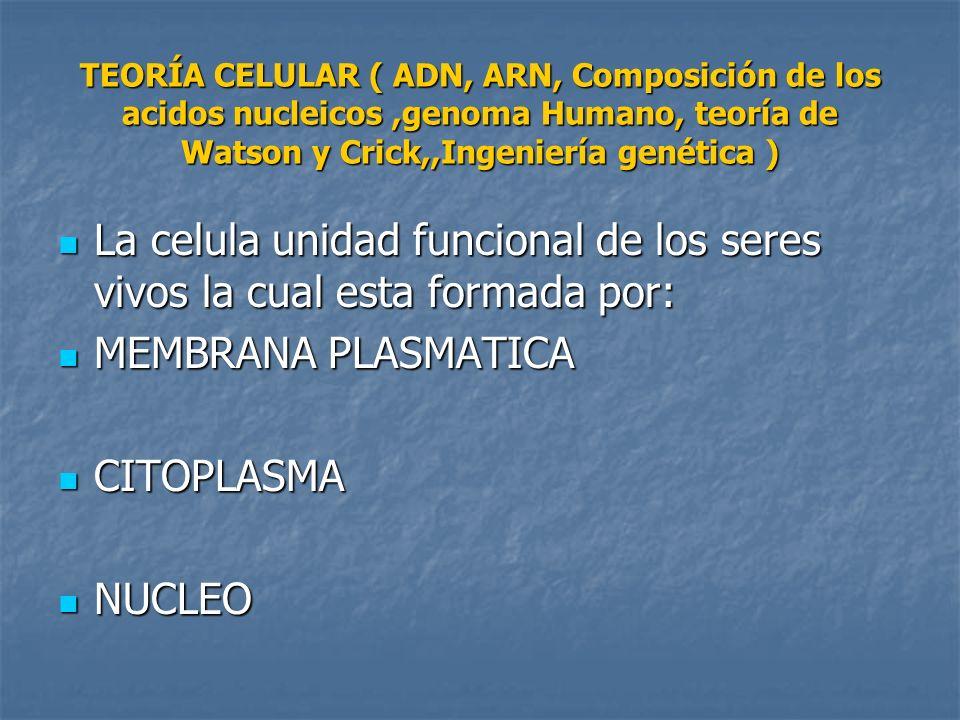 TEORÍA CELULAR ( ADN, ARN, Composición de los acidos nucleicos ,genoma Humano, teoría de Watson y Crick,,Ingeniería genética )