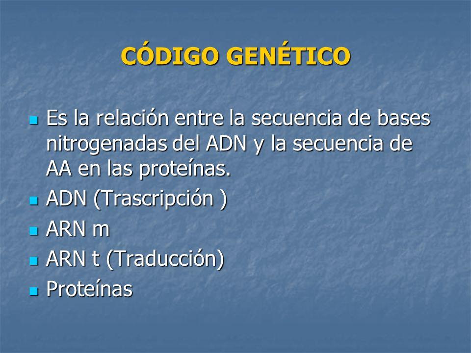 CÓDIGO GENÉTICO Es la relación entre la secuencia de bases nitrogenadas del ADN y la secuencia de AA en las proteínas.