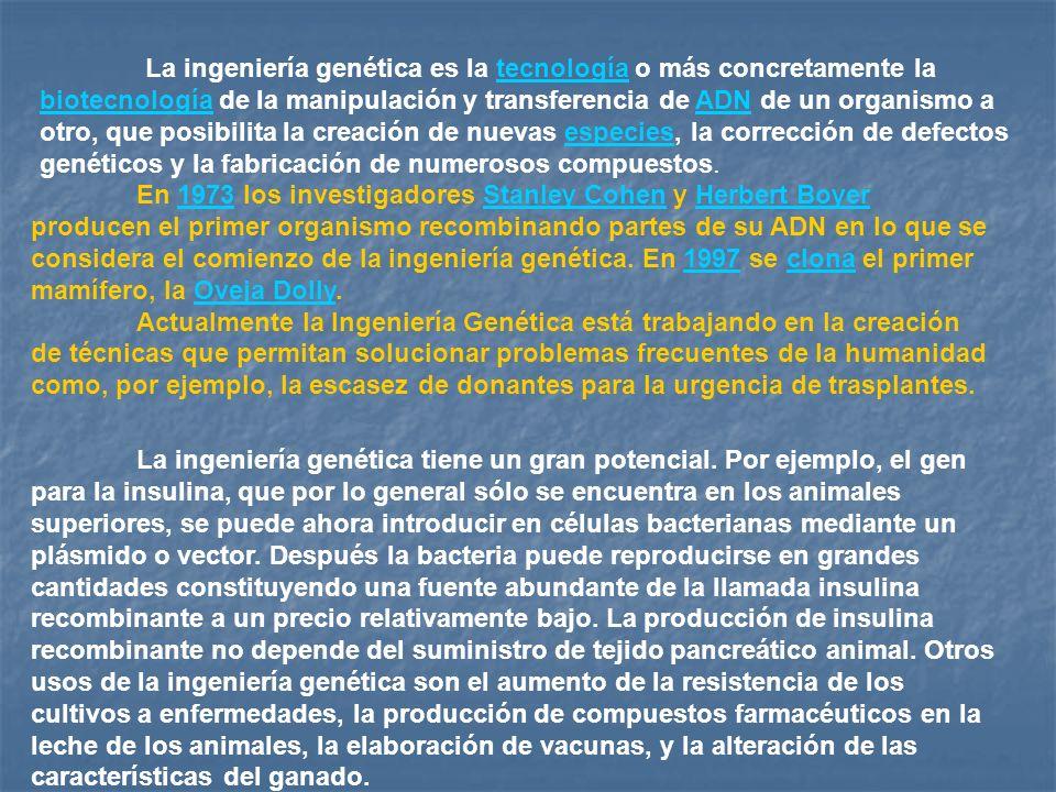 La ingeniería genética es la tecnología o más concretamente la biotecnología de la manipulación y transferencia de ADN de un organismo a otro, que posibilita la creación de nuevas especies, la corrección de defectos genéticos y la fabricación de numerosos compuestos.