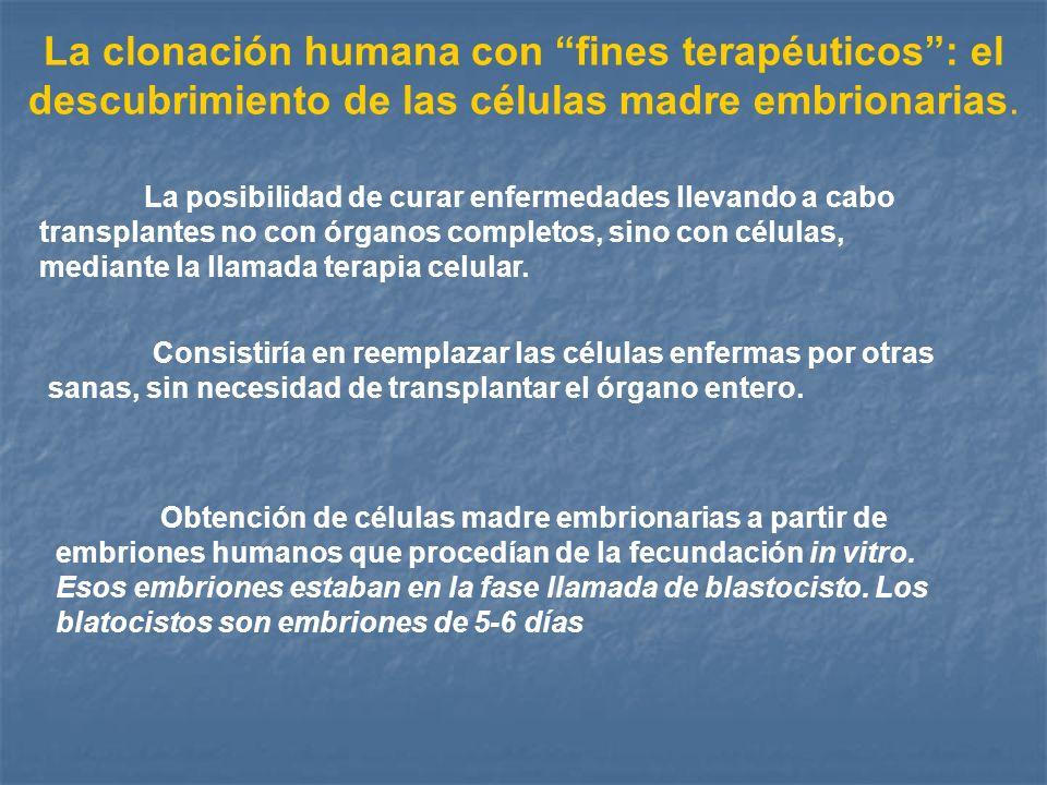 La clonación humana con fines terapéuticos : el descubrimiento de las células madre embrionarias.
