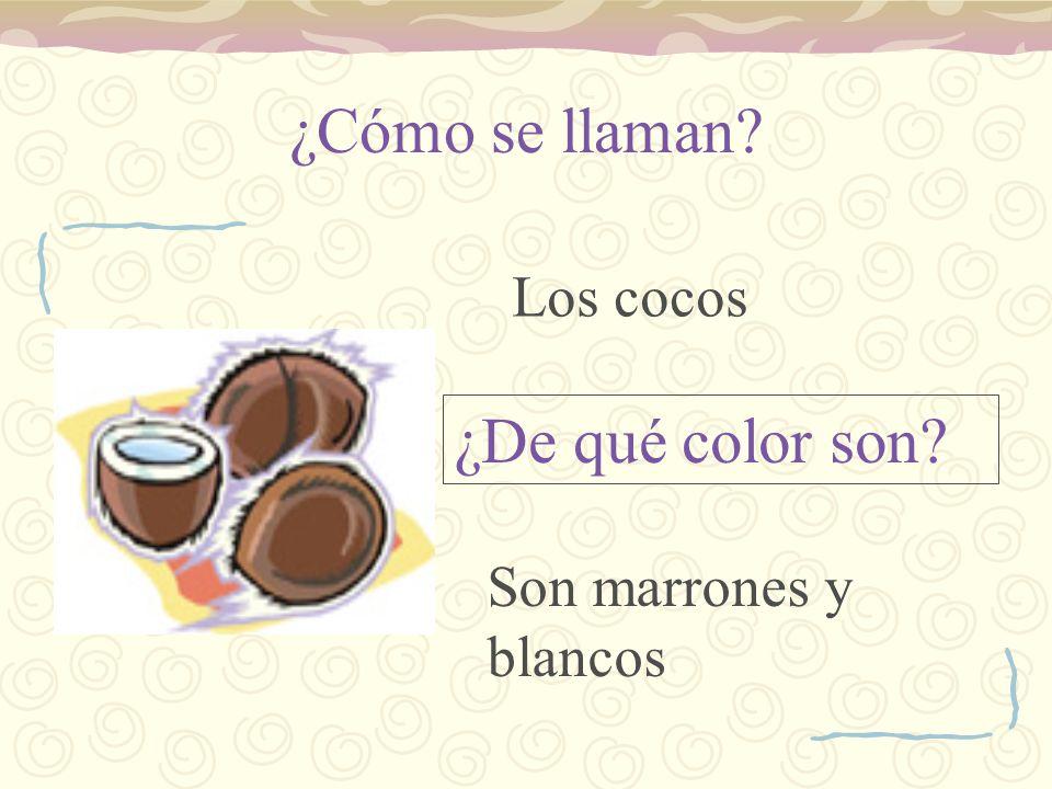 ¿Cómo se llaman Los cocos ¿De qué color son Son marrones y blancos