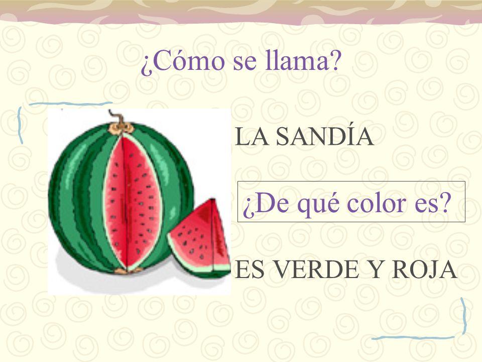 ¿Cómo se llama LA SANDÍA ¿De qué color es ES VERDE Y ROJA