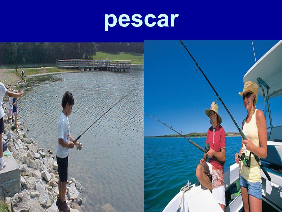 pescar 67