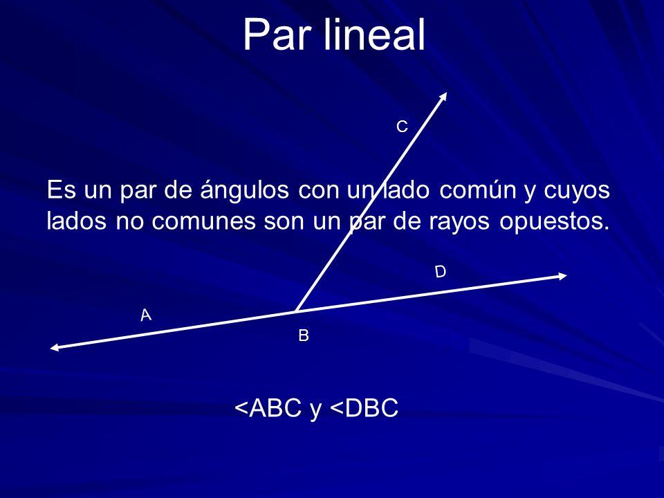 Par lineal C. Es un par de ángulos con un lado común y cuyos lados no comunes son un par de rayos opuestos.