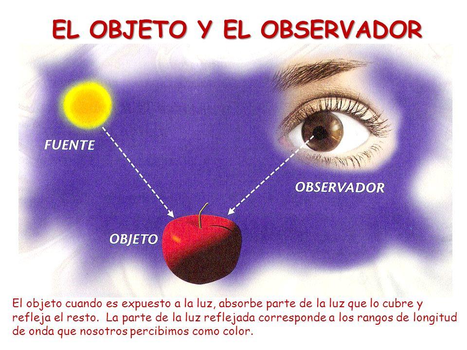 EL OBJETO Y EL OBSERVADOR