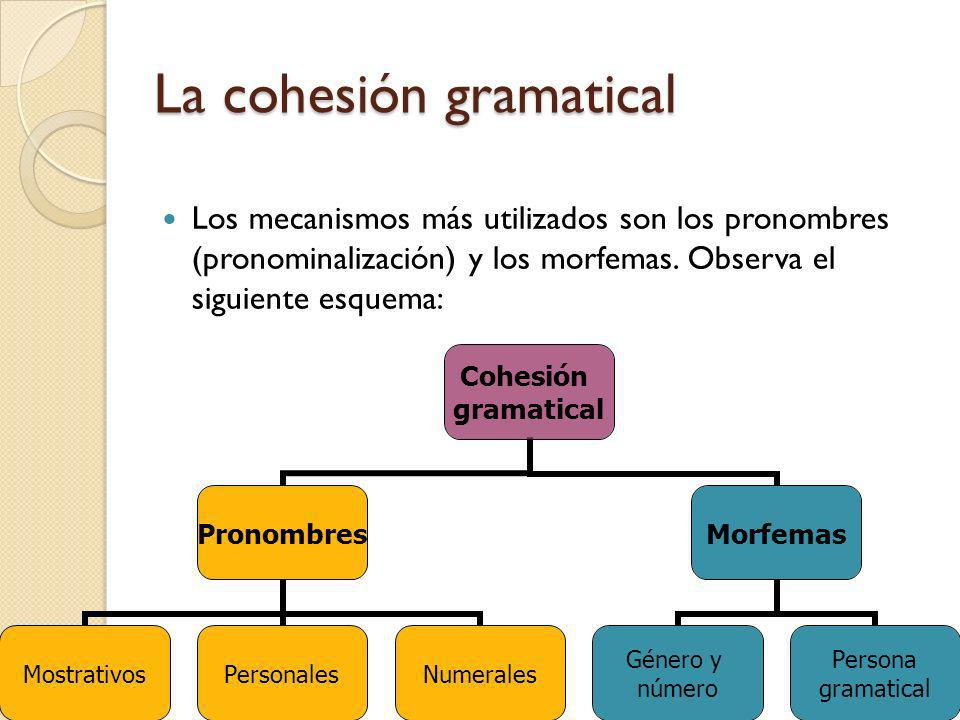 La cohesión gramatical