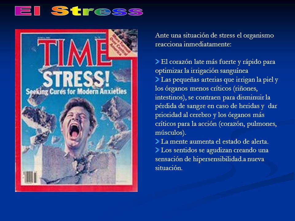 El Stress Ante una situación de stress el organismo reacciona inmediatamente: