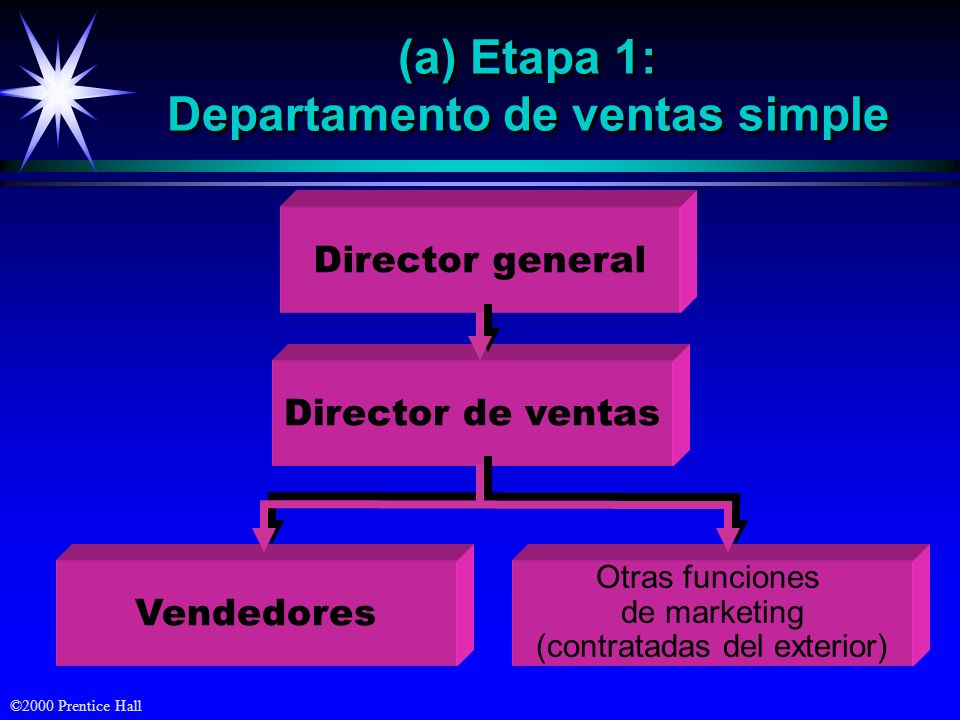 (a) Etapa 1: Departamento de ventas simple