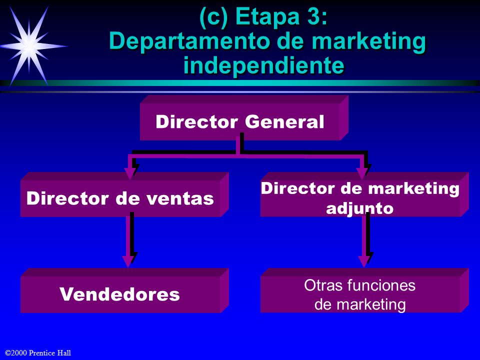 (c) Etapa 3: Departamento de marketing independiente