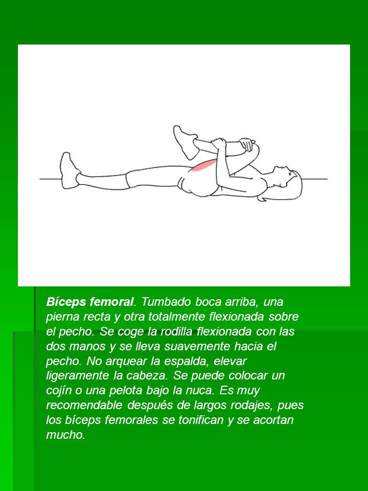 Bíceps femoral. Tumbado boca arriba, una pierna recta y otra totalmente flexionada sobre el pecho.