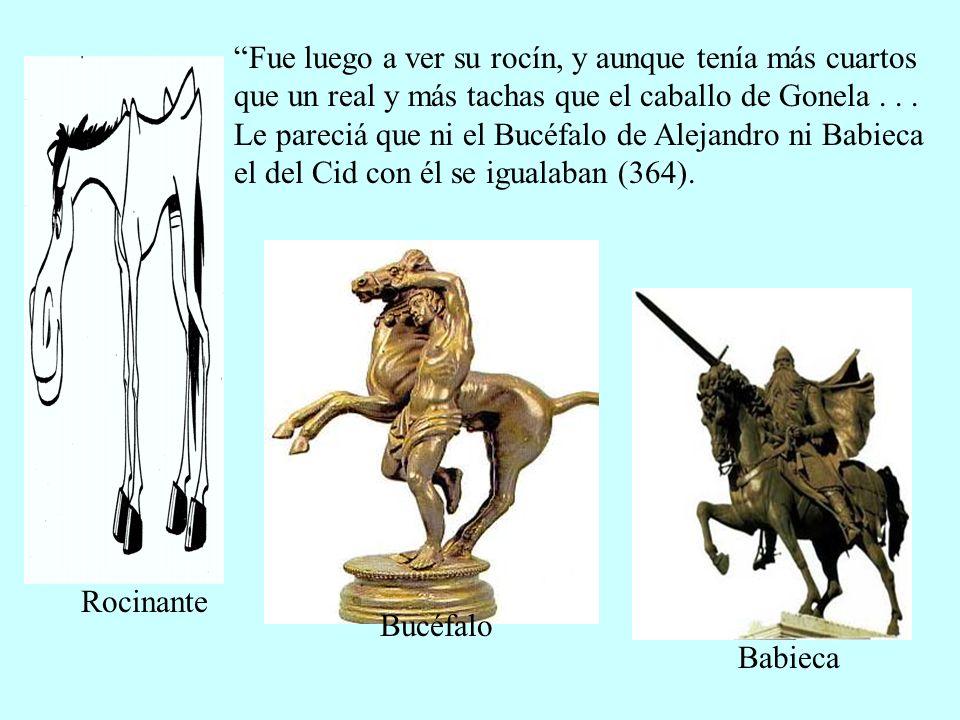 Fue luego a ver su rocín, y aunque tenía más cuartos que un real y más tachas que el caballo de Gonela . . . Le pareciá que ni el Bucéfalo de Alejandro ni Babieca el del Cid con él se igualaban (364).