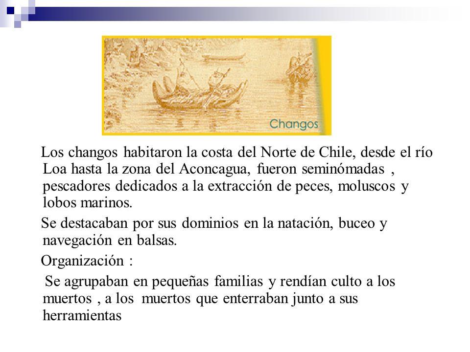 Los changos habitaron la costa del Norte de Chile, desde el río Loa hasta la zona del Aconcagua, fueron seminómadas , pescadores dedicados a la extracción de peces, moluscos y lobos marinos.