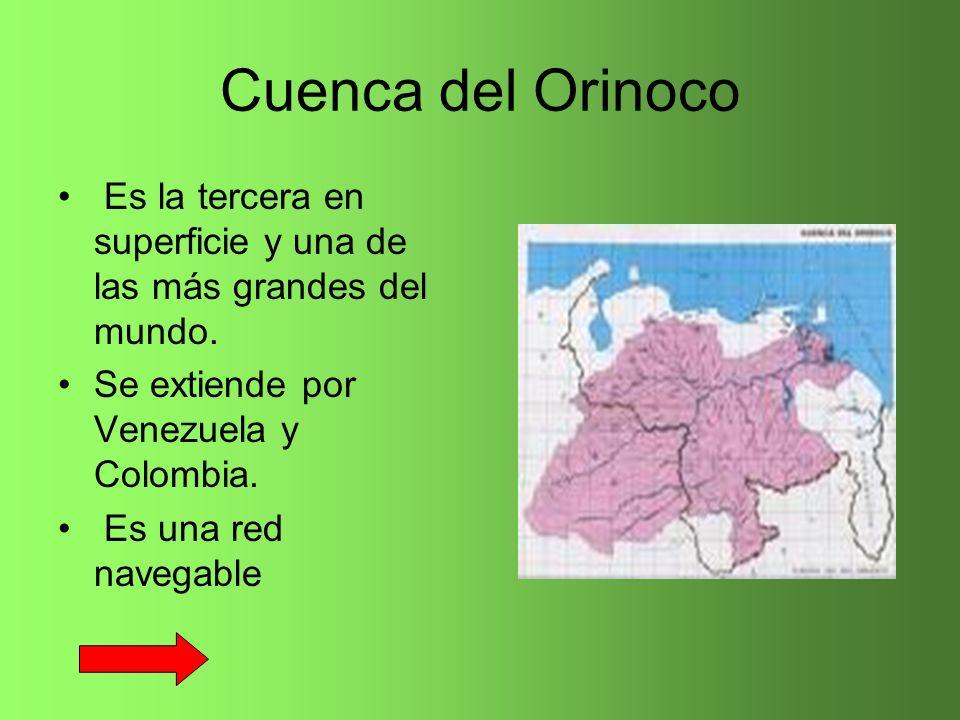 Cuenca del Orinoco Es la tercera en superficie y una de las más grandes del mundo. Se extiende por Venezuela y Colombia.