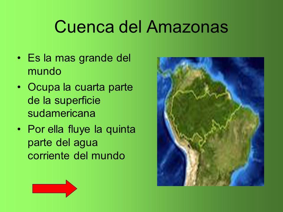 Cuenca del Amazonas Es la mas grande del mundo