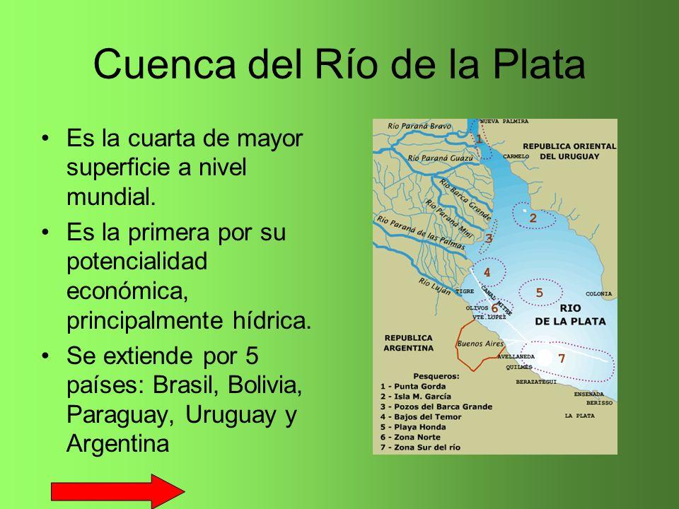 Cuenca del Río de la Plata