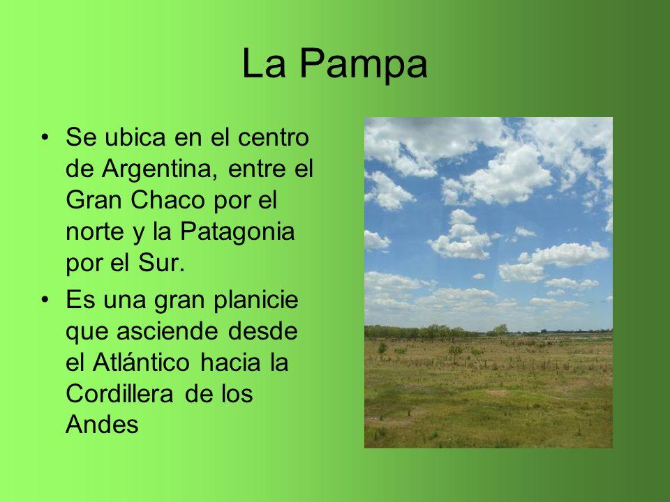 La Pampa Se ubica en el centro de Argentina, entre el Gran Chaco por el norte y la Patagonia por el Sur.