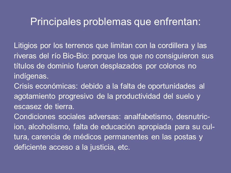 Principales problemas que enfrentan: