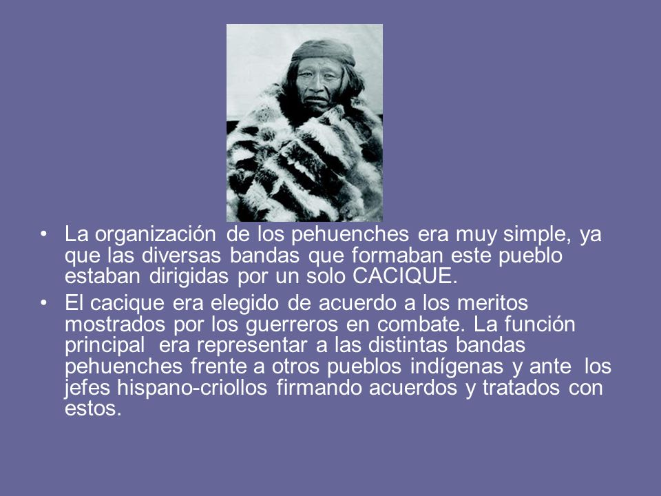 La organización de los pehuenches era muy simple, ya que las diversas bandas que formaban este pueblo estaban dirigidas por un solo CACIQUE.