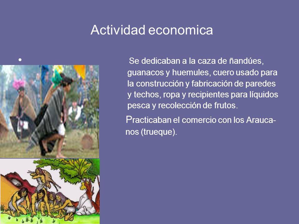 Actividad economica Se dedicaban a la caza de ñandúes,