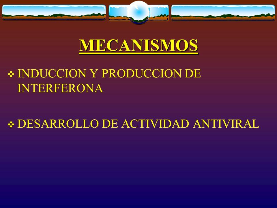MECANISMOS INDUCCION Y PRODUCCION DE INTERFERONA