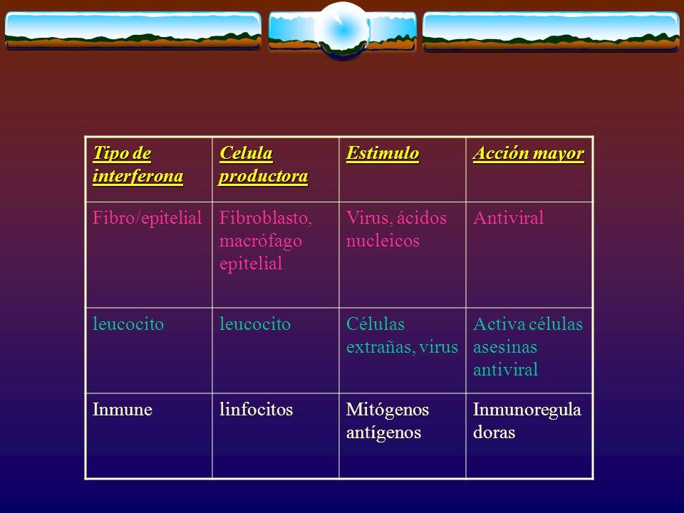 Tipo de interferona Celula productora. Estimulo. Acción mayor. Fibro/epitelial. Fibroblasto, macrófago epitelial.
