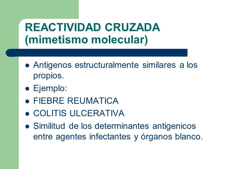 REACTIVIDAD CRUZADA (mimetismo molecular)