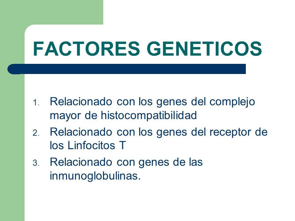 FACTORES GENETICOS Relacionado con los genes del complejo mayor de histocompatibilidad. Relacionado con los genes del receptor de los Linfocitos T.