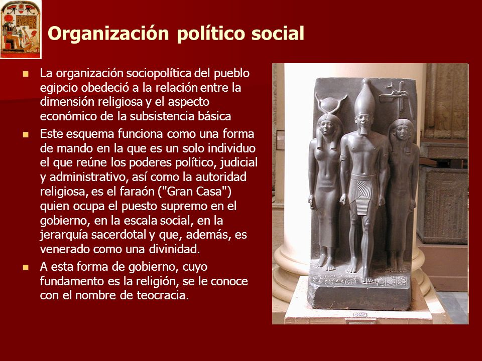 Organización político social