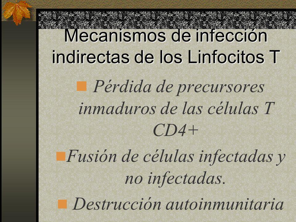 Mecanismos de infección indirectas de los Linfocitos T