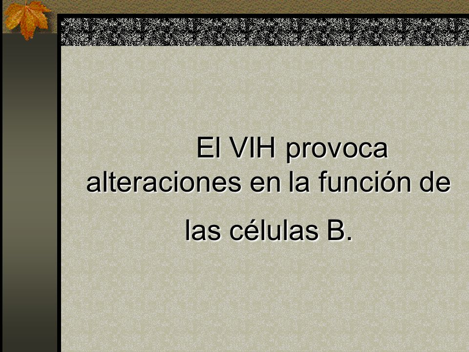 El VIH provoca alteraciones en la función de las células B.