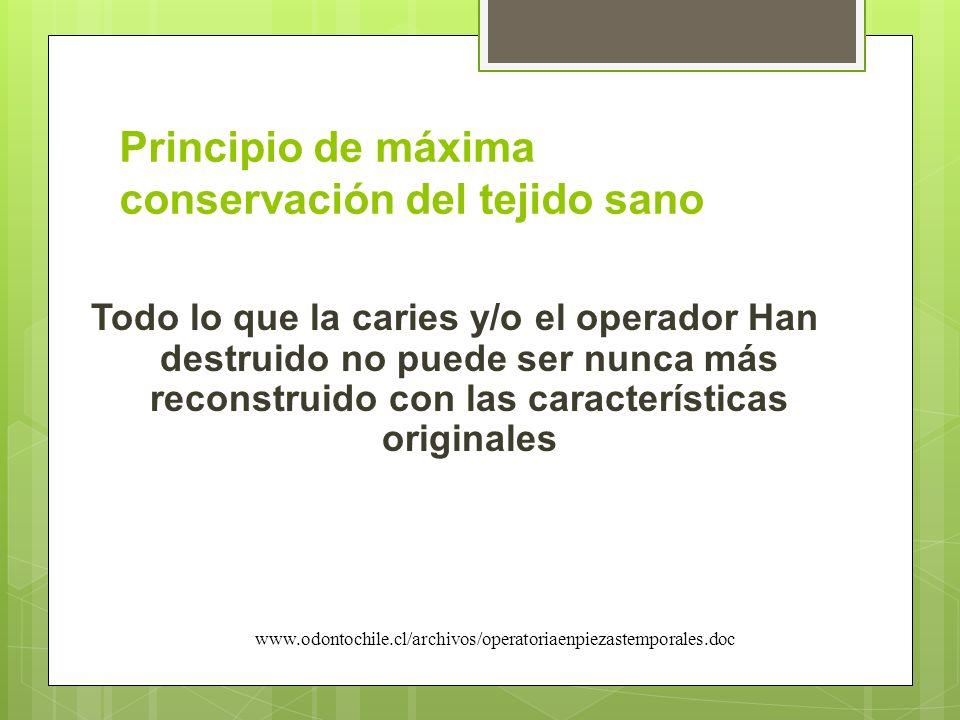 Principio de máxima conservación del tejido sano