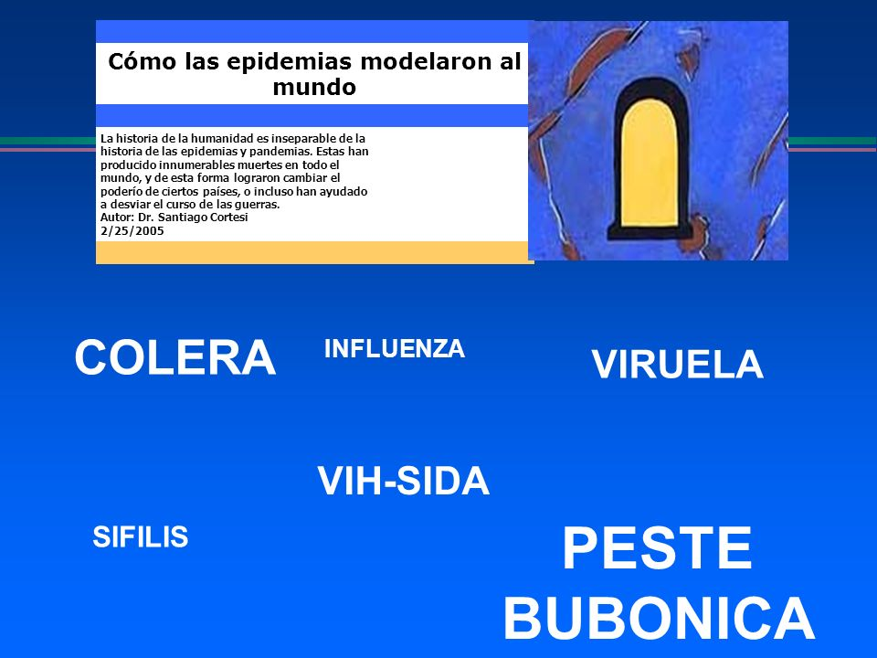 Cómo las epidemias modelaron al mundo