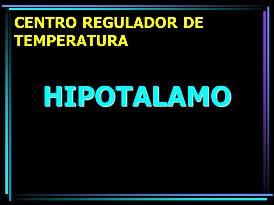 CENTRO REGULADOR DE TEMPERATURA