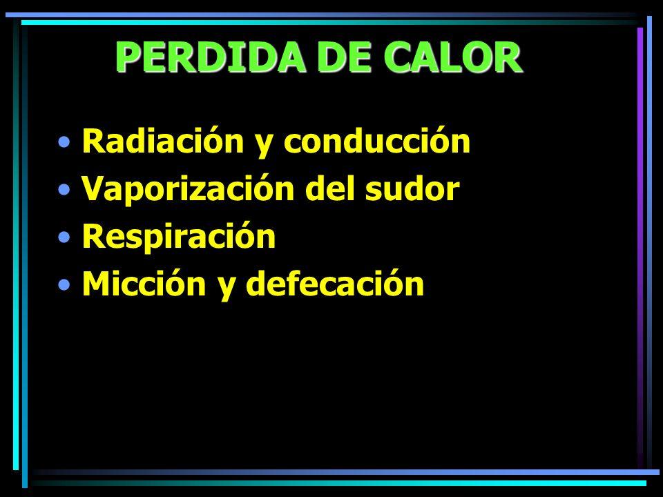 PERDIDA DE CALOR Radiación y conducción Vaporización del sudor