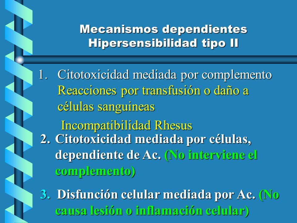 Mecanismos dependientes Hipersensibilidad tipo II