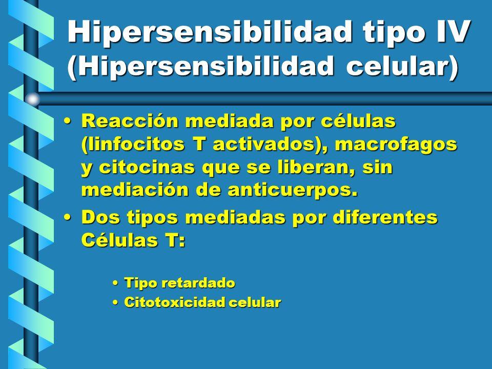 Hipersensibilidad tipo IV (Hipersensibilidad celular)