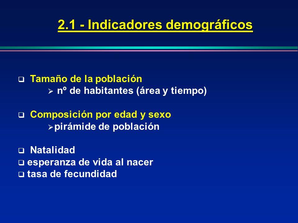 2.1 - Indicadores demográficos