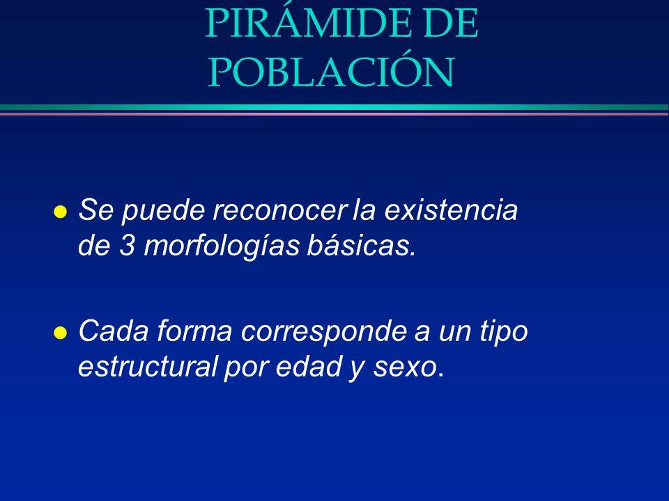 PIRÁMIDE DE POBLACIÓNSe puede reconocer la existencia de 3 morfologías básicas.