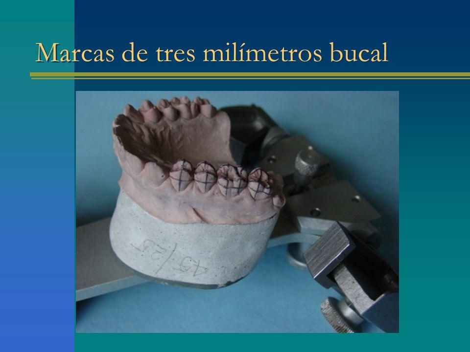 Marcas de tres milímetros bucal