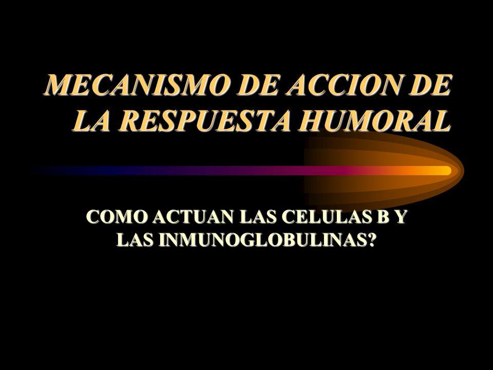 MECANISMO DE ACCION DE LA RESPUESTA HUMORAL