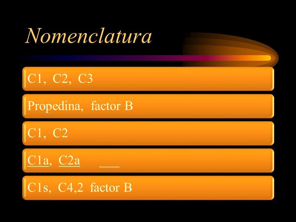 Nomenclatura C1, C2, C3 Propedina, factor B C1, C2 C1a, C2a ___