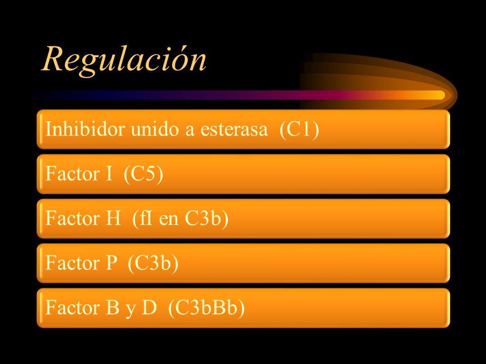 Regulación Inhibidor unido a esterasa (C1) Factor I (C5)