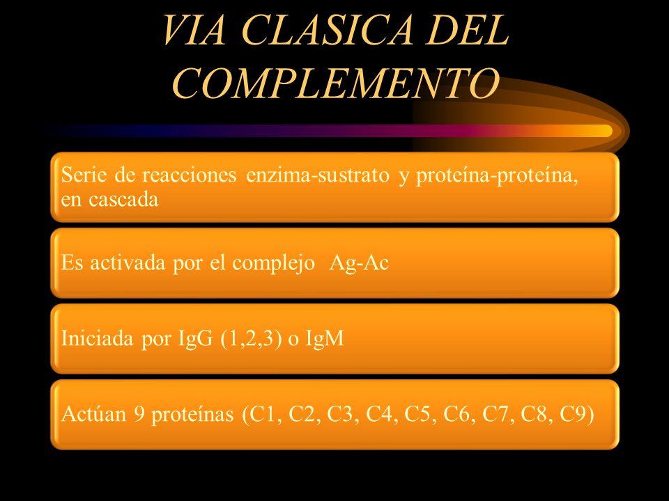 VIA CLASICA DEL COMPLEMENTO