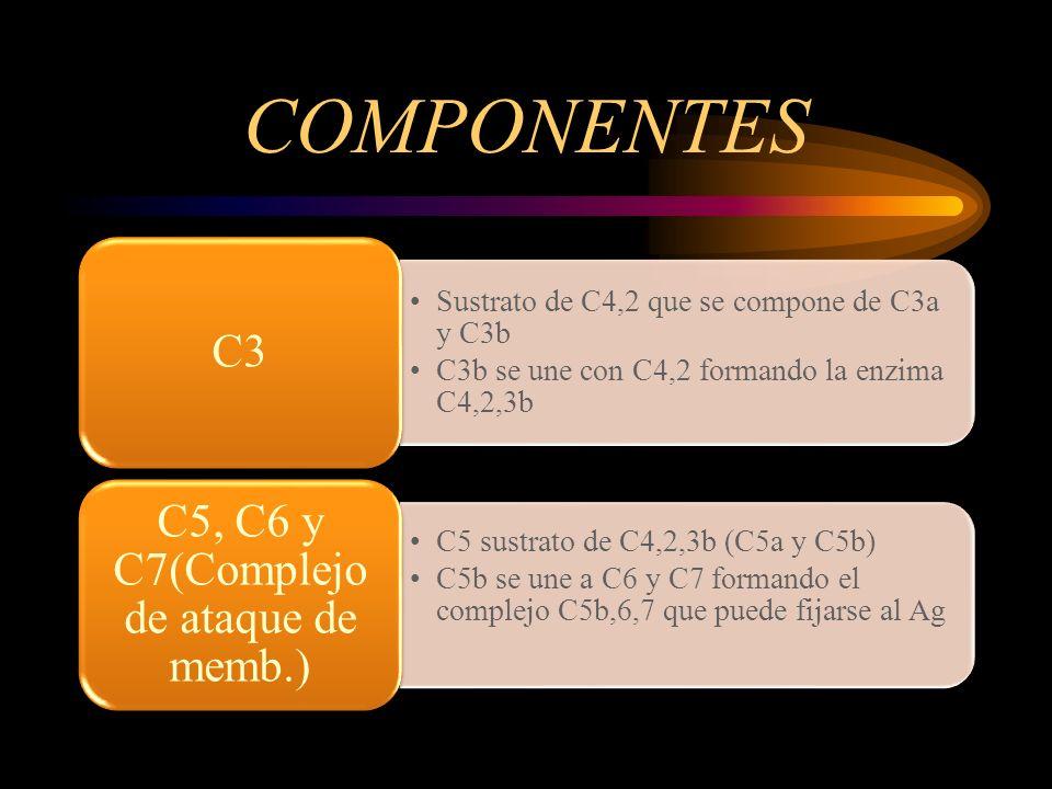 C5, C6 y C7(Complejo de ataque de memb.)