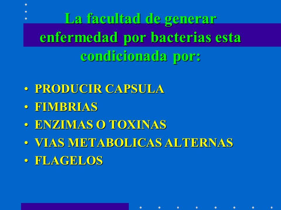 La facultad de generar enfermedad por bacterias esta condicionada por: